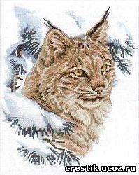 схемы вышивки крестом кошки